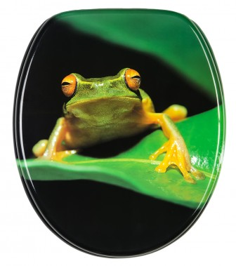 Soft Close Toilet Seat Green Frog