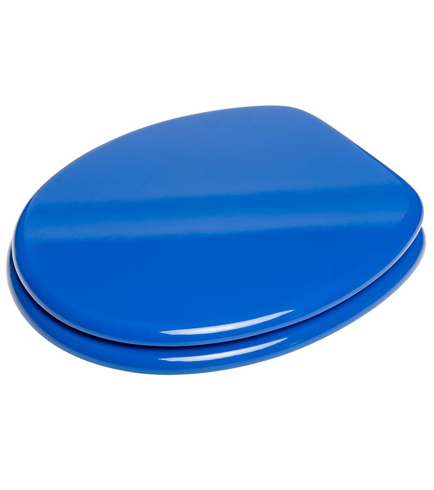 Soft Close Toilet Seat Blue