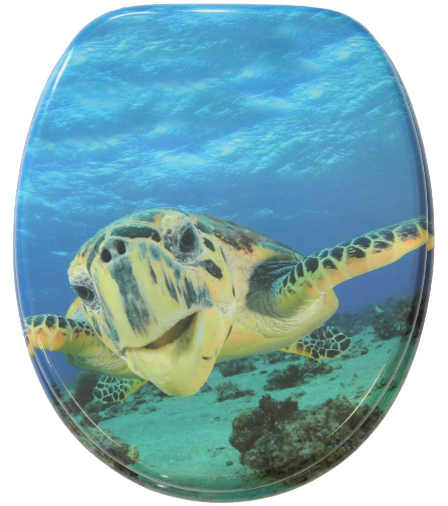 Toilet Seat Turtle