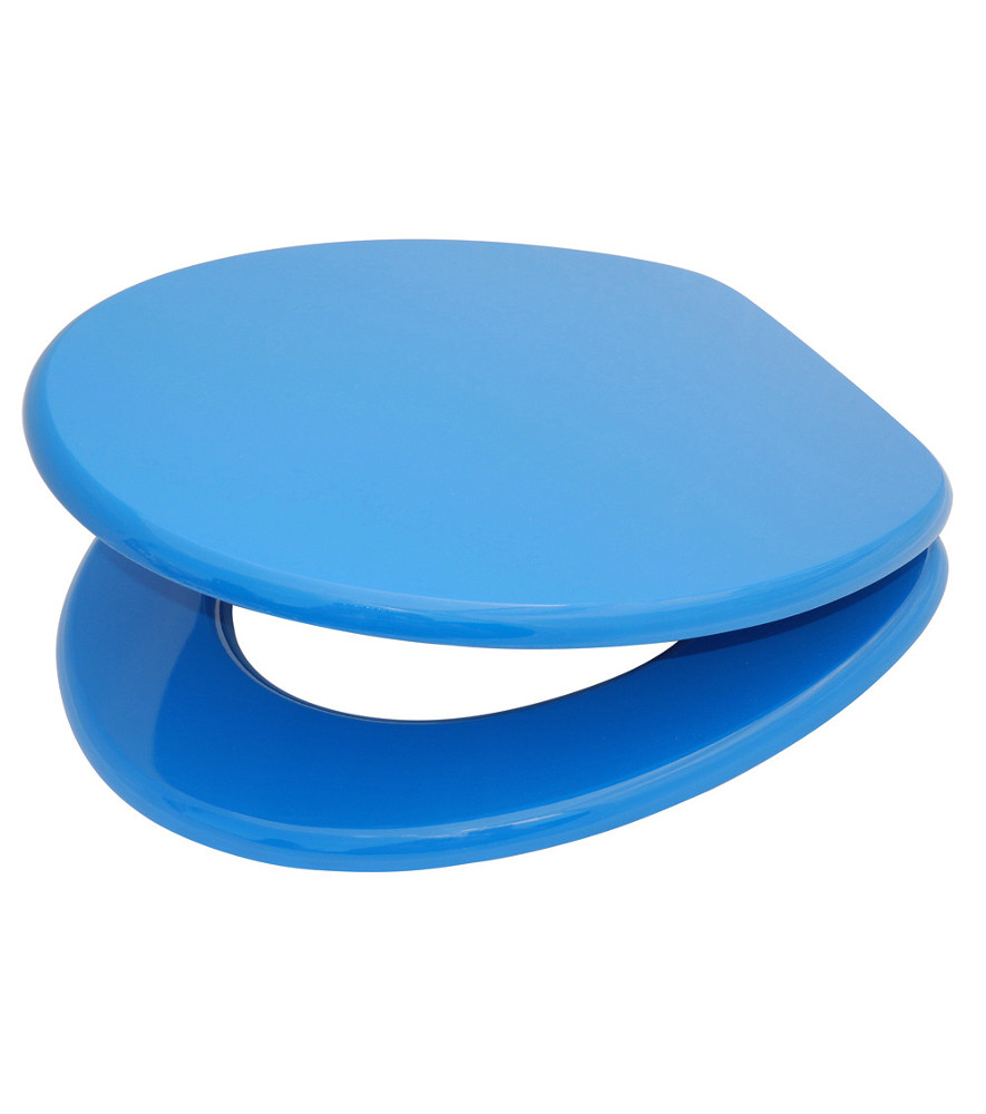 Toilet Seat Blue