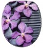 Soft Close Toilet Seat Vanda