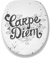 Soft Close Toilet Seat Carpe Diem