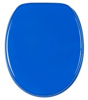 Soft Close Toilet Seat Blue