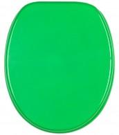 Toilet Seat Green