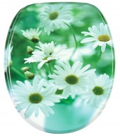 Soft Close Toilet Seat Daisies