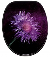 Soft Close Toilet Seat Purple Dust