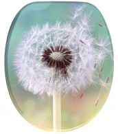 Soft Close Toilet Seat Dandelion