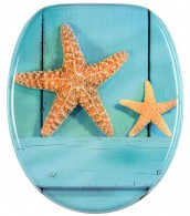 Soft Close Toilet Seat Starfish
