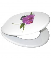 Soft Close Toilet Seat Orchid