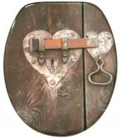 Soft Close Toilet Seat Locks