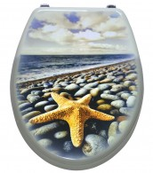 Toilet Seat Sea Star Gold